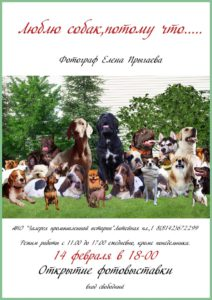 """Выставка """"Люблю собак, потому что..."""""""